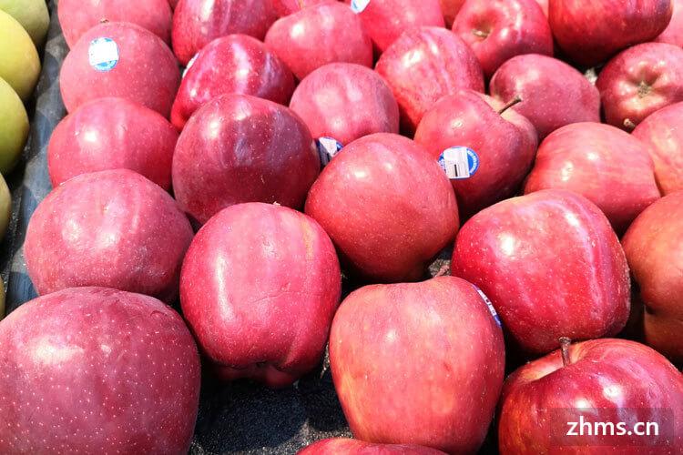 十大水果连锁品牌排行前三
