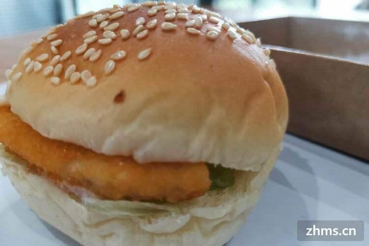 太阳星汉堡相似图片2
