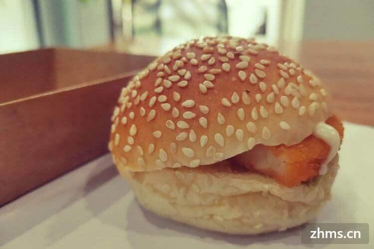 加香汉堡相似图片3