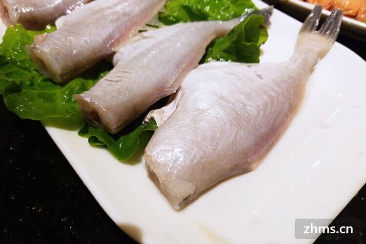 耗儿鱼要煮多久