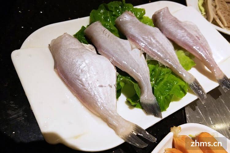 耗儿鱼为什么越小越贵?大的为什么便宜?