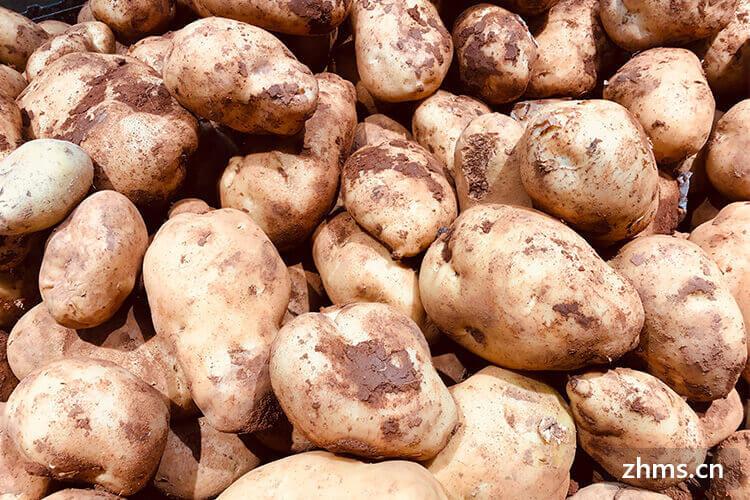 土豆加什么好吃?土豆不能加什么?