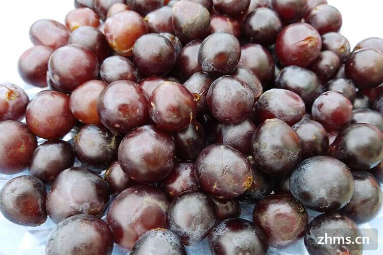葡萄几月份成熟