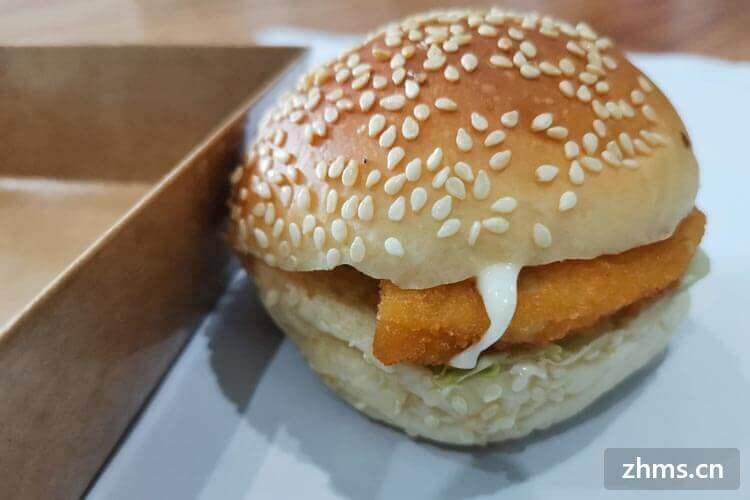 艾力克炸鸡汉堡相似图片2