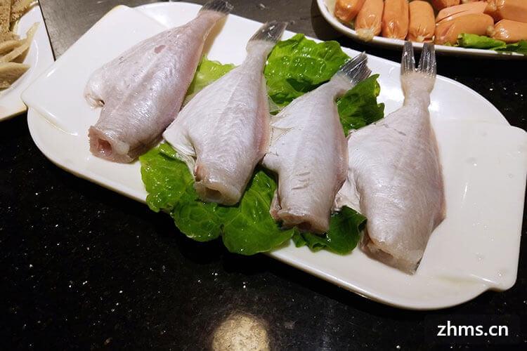 耗儿鱼要煮几分钟熟