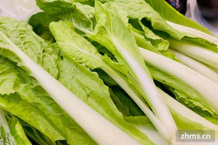 大家都吃过青菜,那么青菜炒香菇青菜怎么切呢?