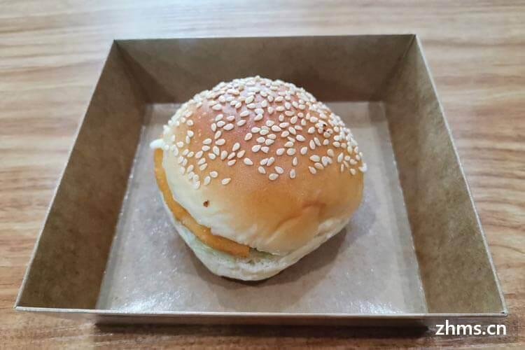 德洲汉堡相似图片3