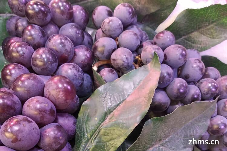 最贵的八种葡萄