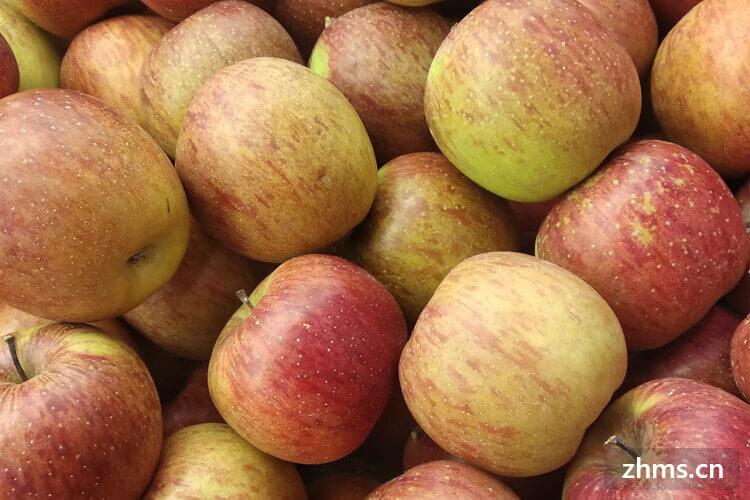 果唯伊水果相似图片2