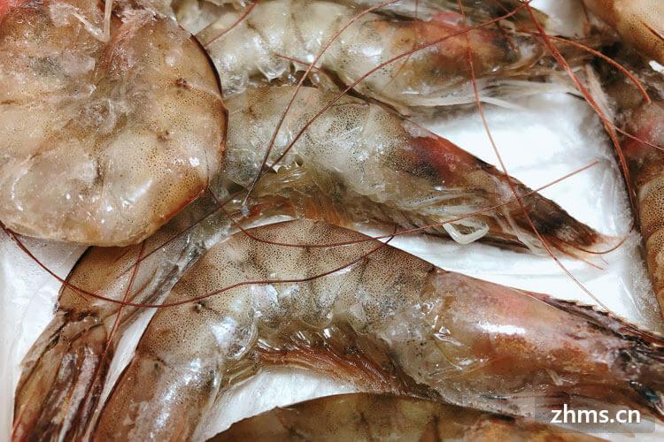怎么区分市场卖的虾是淡水还是海水