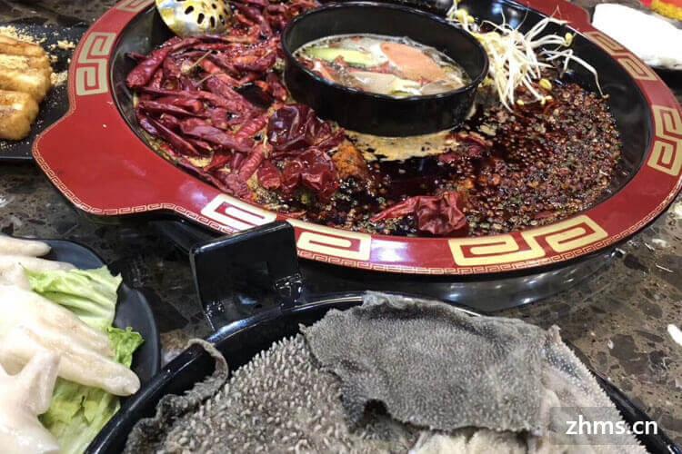 红蜻蜓美蛙鱼头火锅相似图片1
