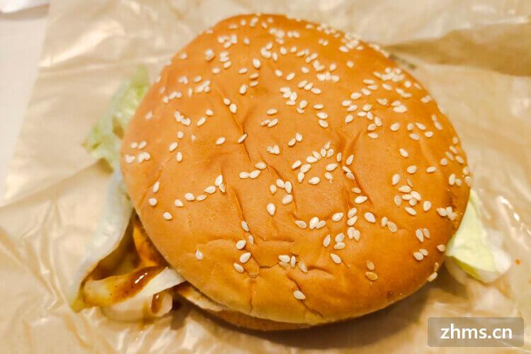 想问一下麦乐香汉堡怎么样?毕业之后想做一下投资做餐饮