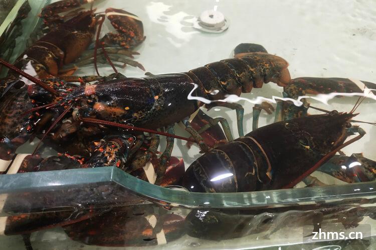 肥妈小龙虾加盟成本会有多少?能说个大概吗?