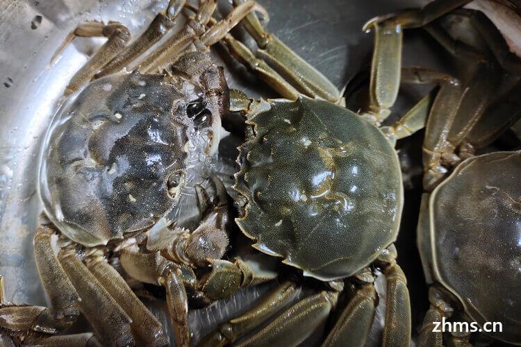 江苏梭子蟹为什么出名?