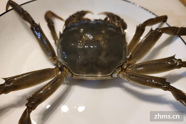 水烧开后蒸螃蟹要蒸多久