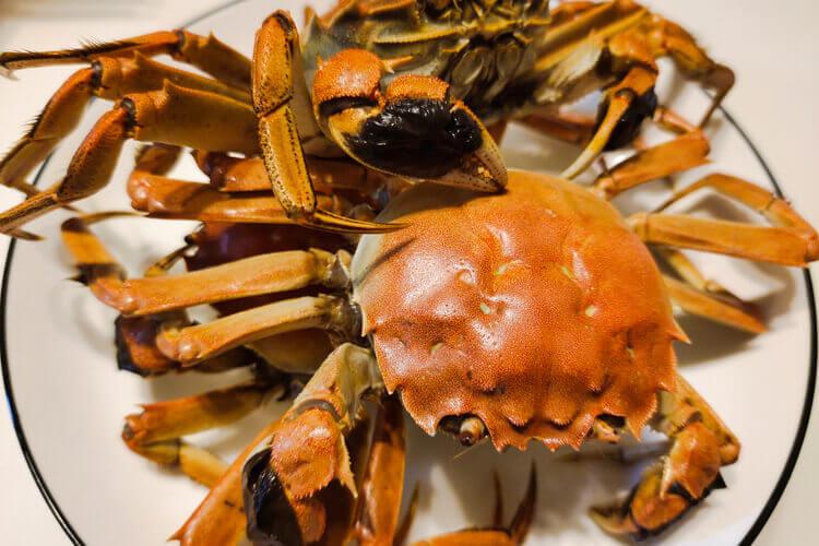 我想吃螃蟹了,请问螃蟹哪些地方可以吃?