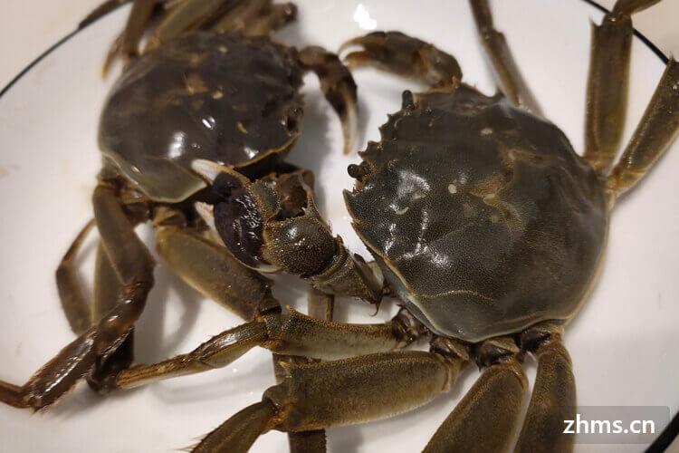 江苏梭子蟹