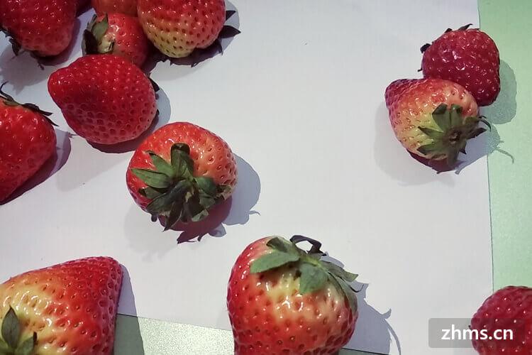 草莓怎么洗才干净