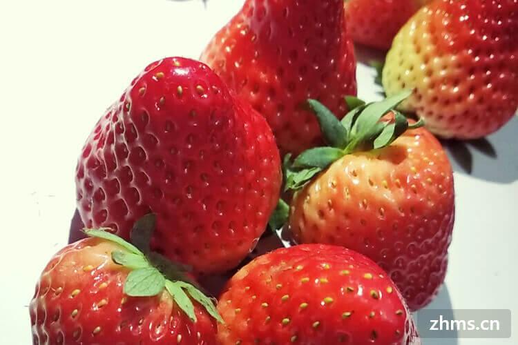 草莓大家都喜欢吃,请问草莓在几月份可以买到?