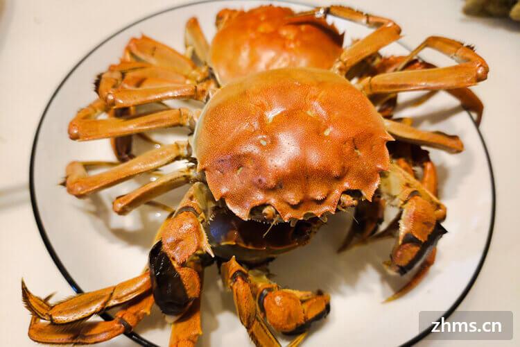 怎么买螃蟹?螃蟹怎么吃?