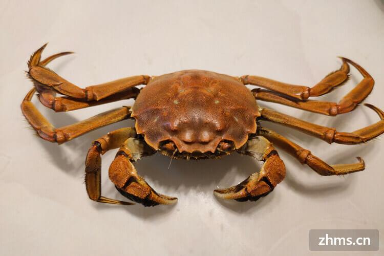 哪里的河蟹最好吃?有哪些好吃的河蟹美食?