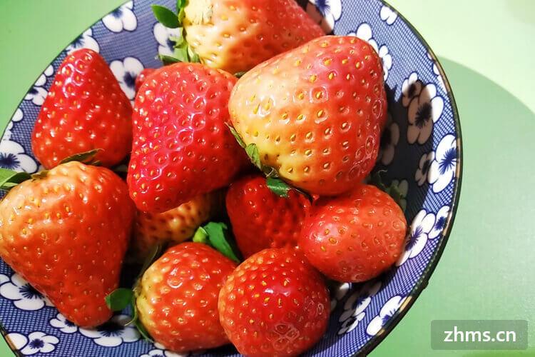 汉沽几月份摘草莓呢?摘草莓多少钱一斤呢?