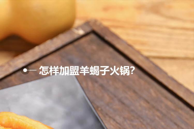 怎样加盟羊蝎子火锅?