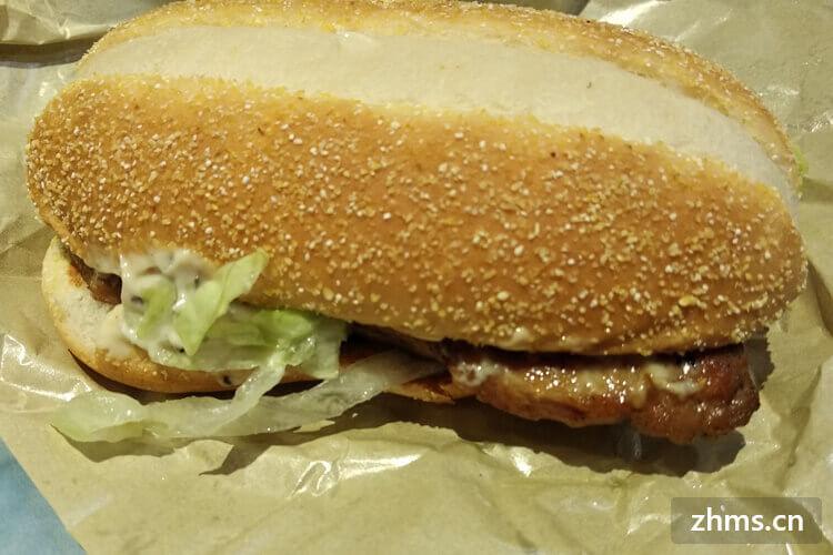 温迪士汉堡相似图片2