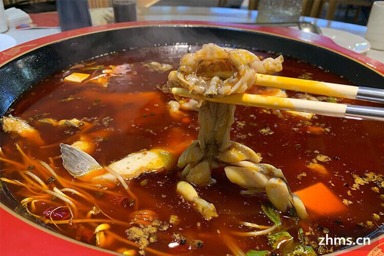 蜀涫美蛙火锅如何加盟