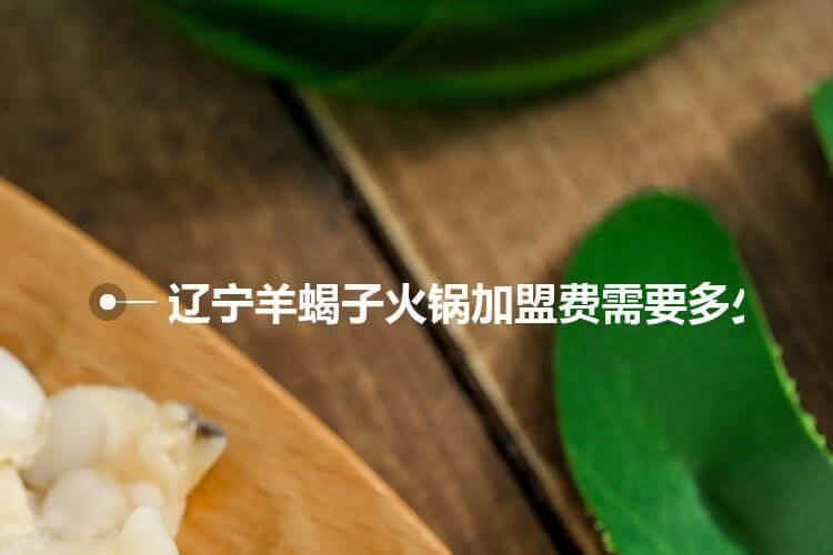 辽宁羊蝎子火锅加盟费需要多少钱?