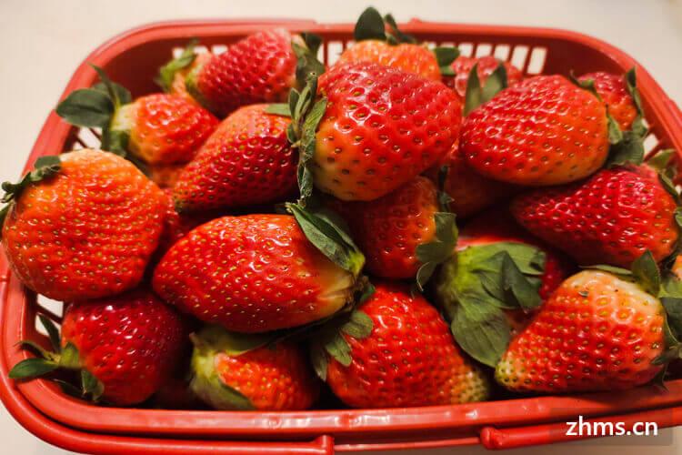 12月吃草莓要洗吗