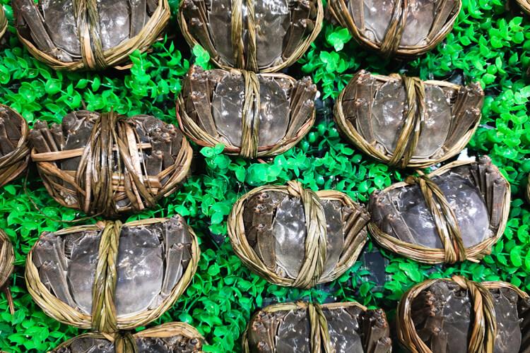 想买大闸蟹吃,不知大闸蟹公几月最肥?