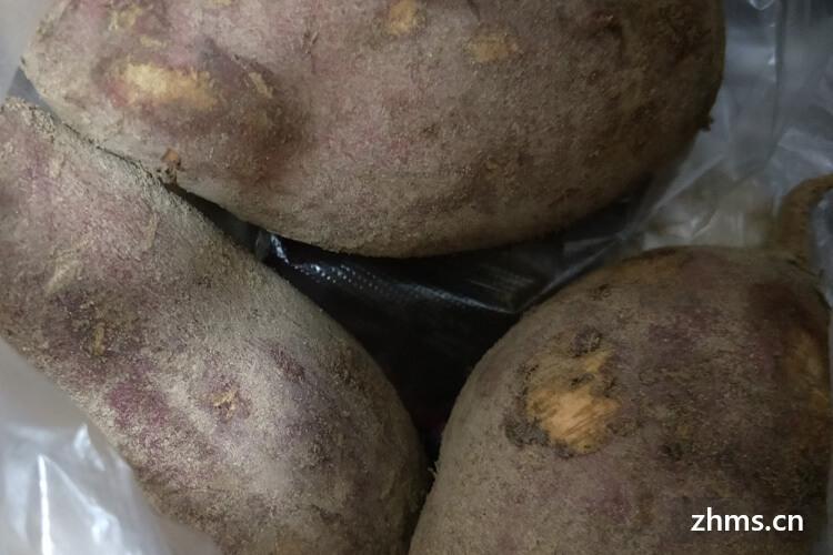 煮红薯的做法是什么