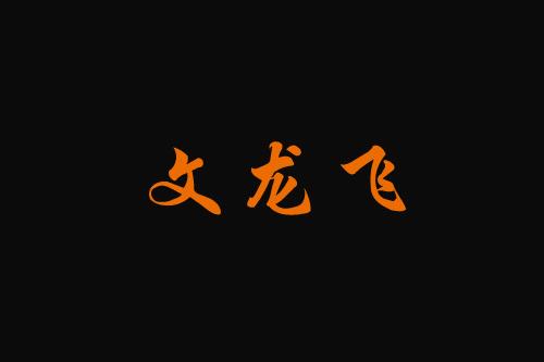 文龙飞中式快餐