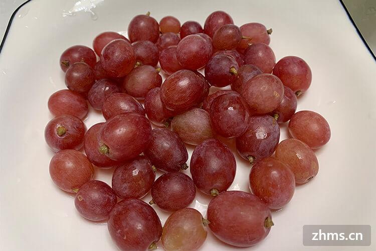 红提是葡萄吗