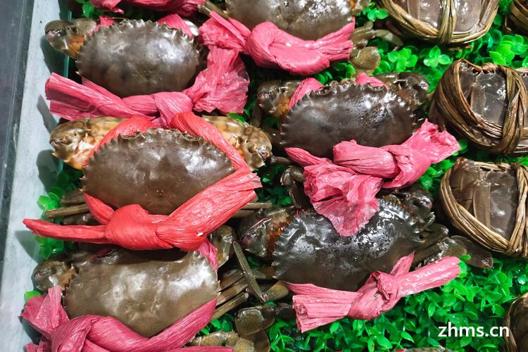 什么样的大闸蟹好?怎么辨别大闸蟹的好坏?