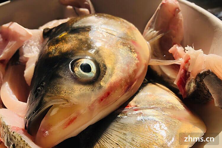 特别喜欢吃鱼头泡饼,我想知道鱼头要煮多少分钟呢?