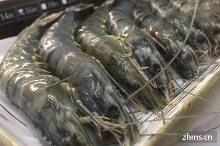 草虾和基围虾区别?虾应该怎样挑选?