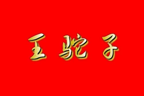 王驼子臭豆腐