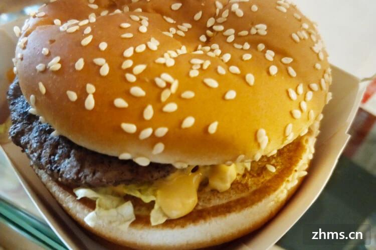 华派士汉堡相似图1