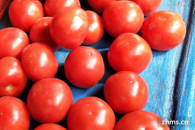 有点坏了的西红柿还可以吃吗