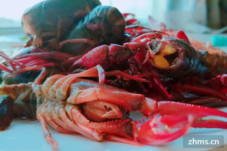 堕落小龙虾相似图片3