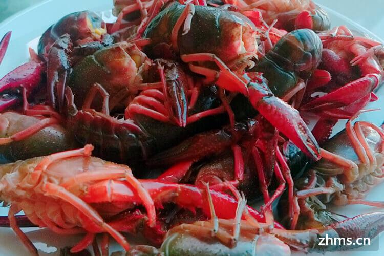 九喜龙虾相似图1