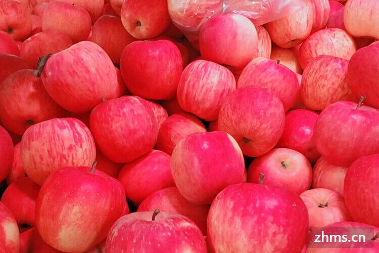 秋天适合的水果有哪些