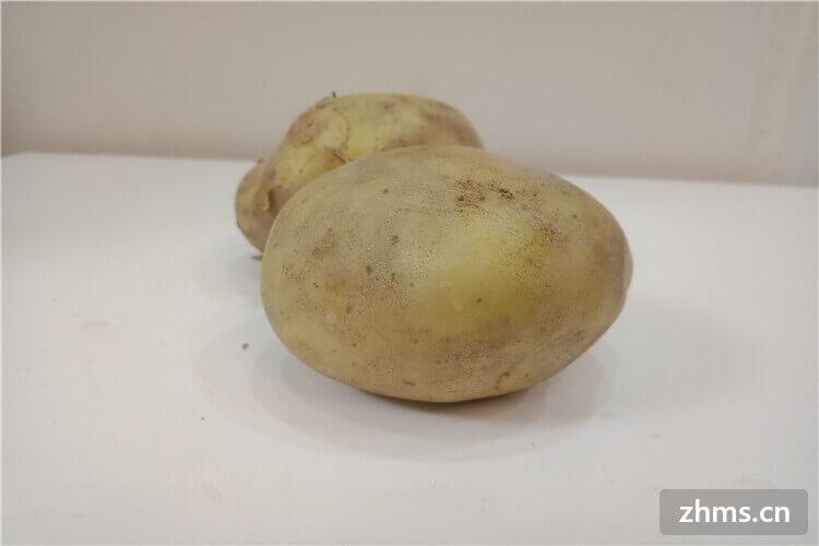脆土豆是不是没熟?土豆的种类有哪些?