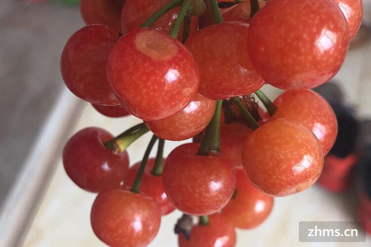 小满吃樱桃好吗