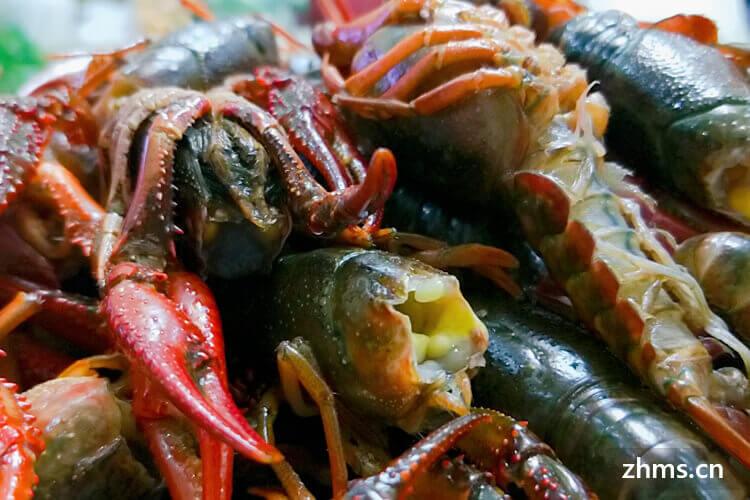 怪客龙虾加盟利润优势是什么?