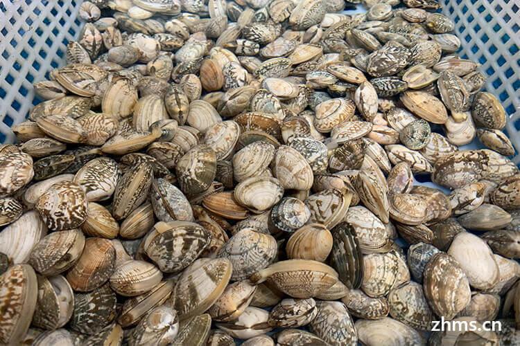 小蛮螺螺蛳粉加盟总店优势有哪些