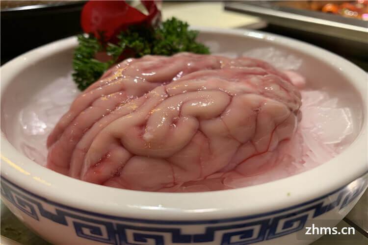 猪脑要煮多久