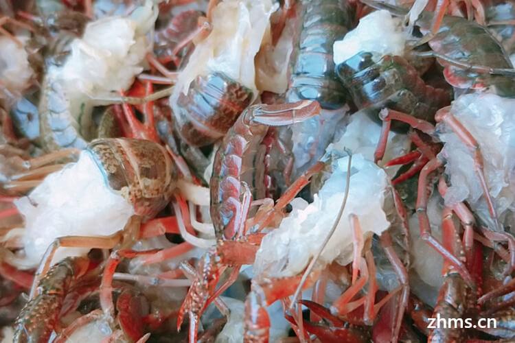 龙虾摇主题西餐厅加盟费用是多少?
